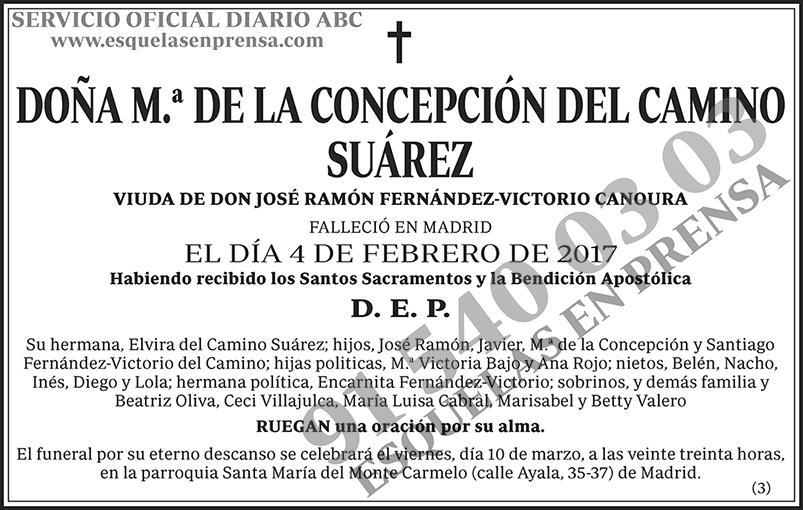 M.ª de la Concepción del Camino Suárez